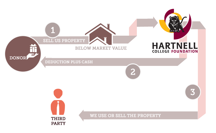 hartnell-infographics-bargain