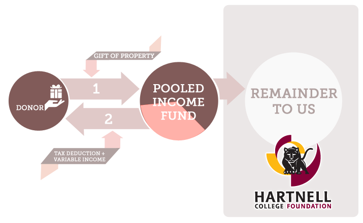hartnell-infographics-pooled
