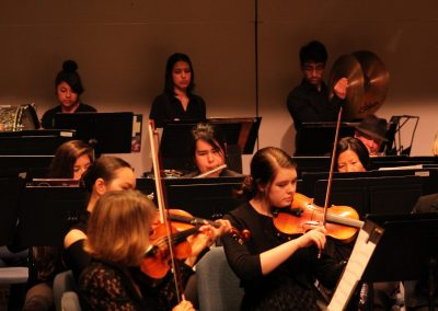musicext_orchestra